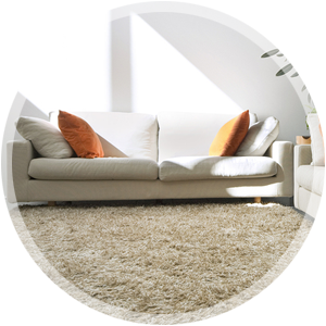 Residential Steam Carpet Cleaning