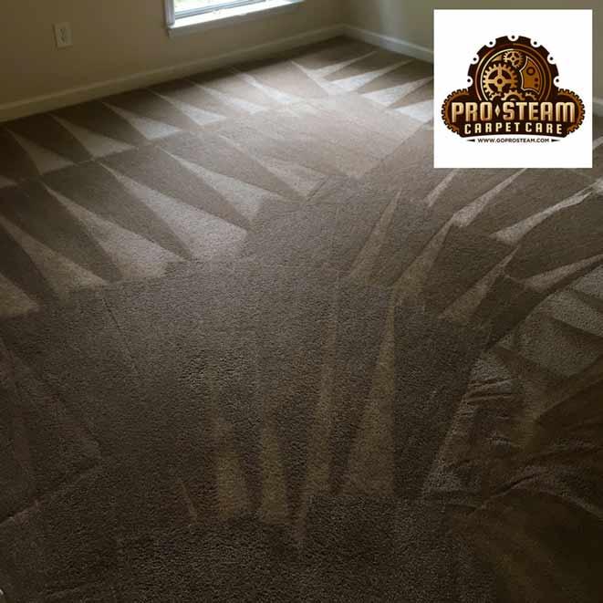 Carpet-Cleaner-Cumming,-GA