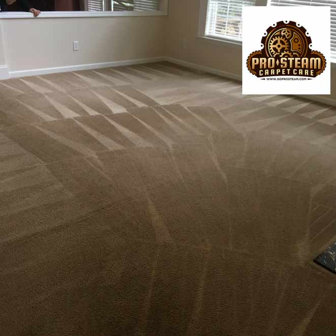 Carpet-Cleaners-Cumming-GA