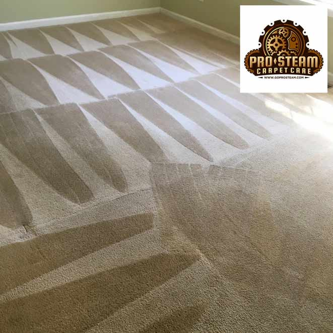 Carpet-Cleaning-Gainesville,-GA1