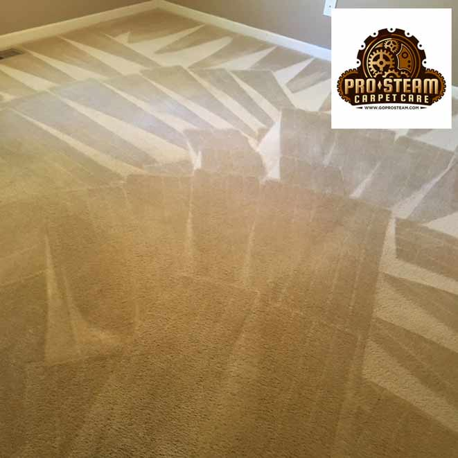 Carpet-Cleaning-Gainesville,-GA2