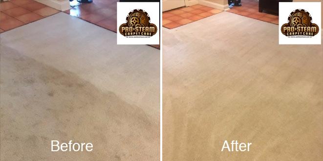 Carpet Cleaning Suwanee-GA-2