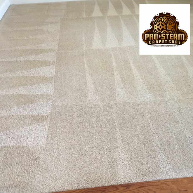 Carpet-cleaning-Snellville-GA