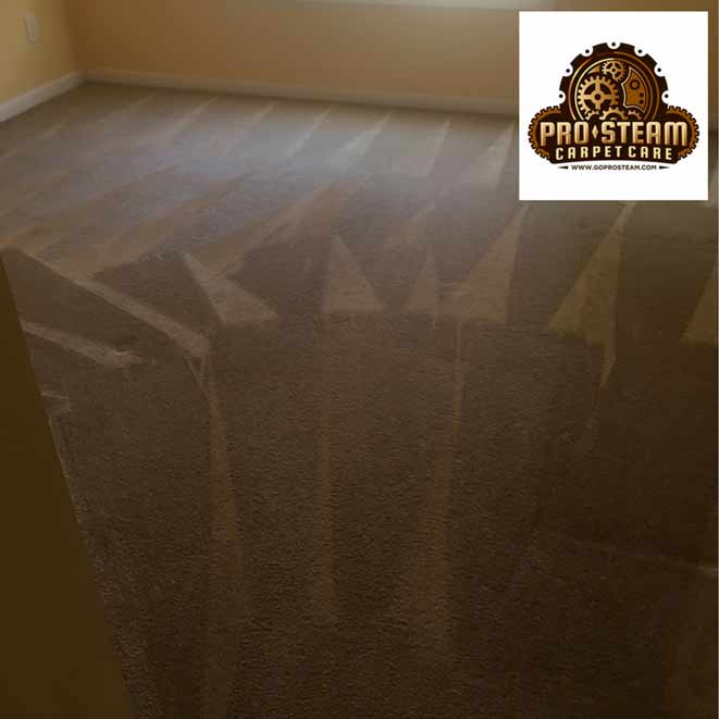 Snellville-GA-carpet-cleaning