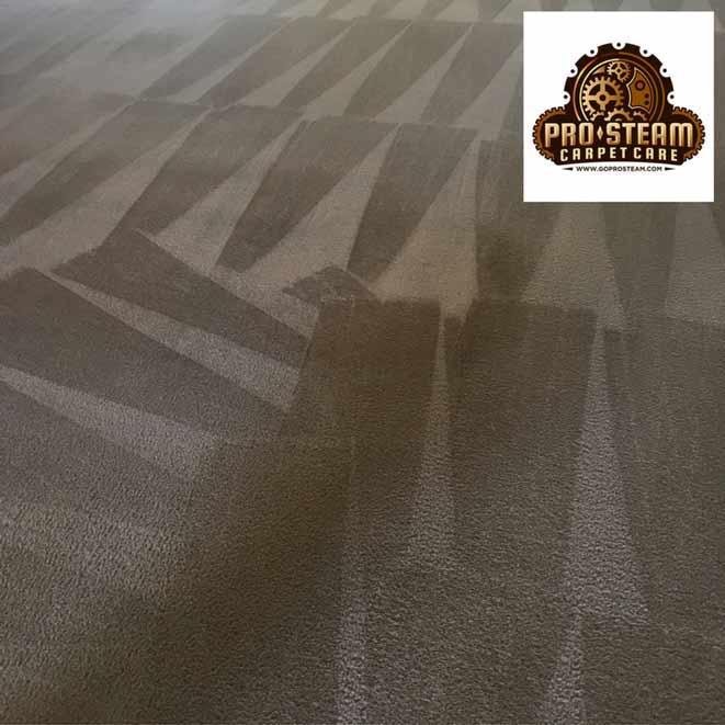 carpet-cleaner-snellville-ga